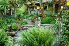 Vườn nhà đáng yêu với những suối hoa lạ mắt, hết sức độc đáo